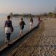 Strandspaziergang nach Lazise
