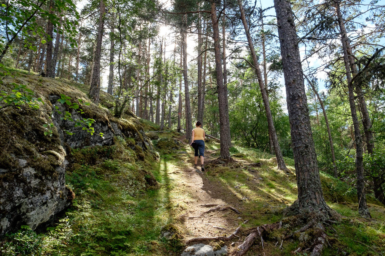 Wanderung bei Borgund