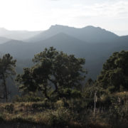Im Esterel-Gebirge